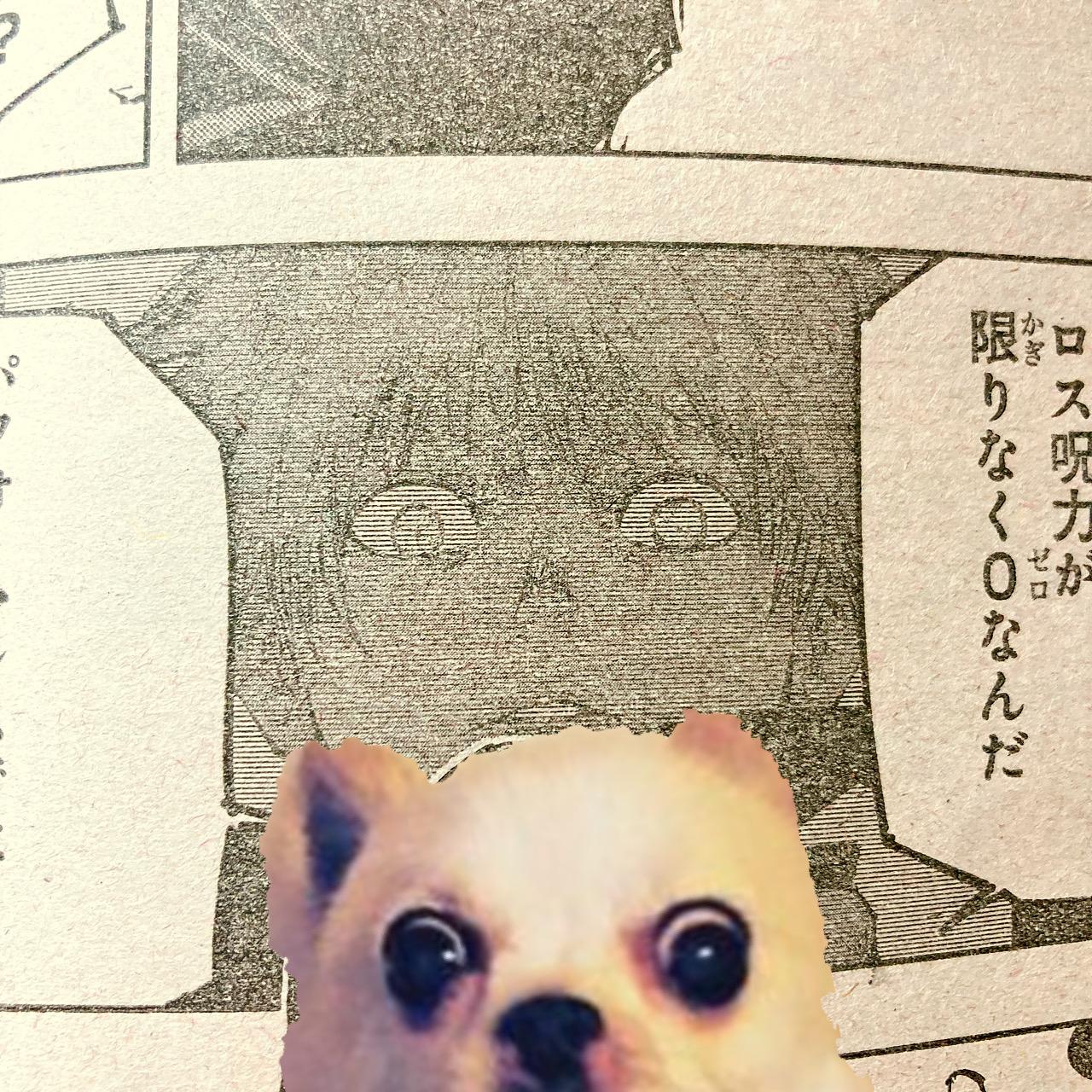 ファイル 2581-1.jpg
